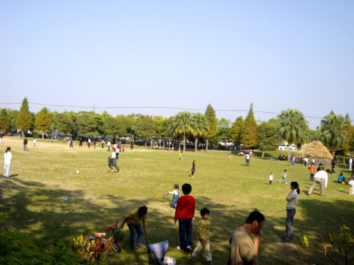 lapangan luas untuk bermain