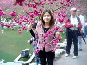 akhirnya aku bisa menyentuh bunga sakura